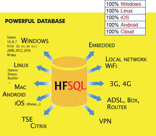 HFSQL Powerful database