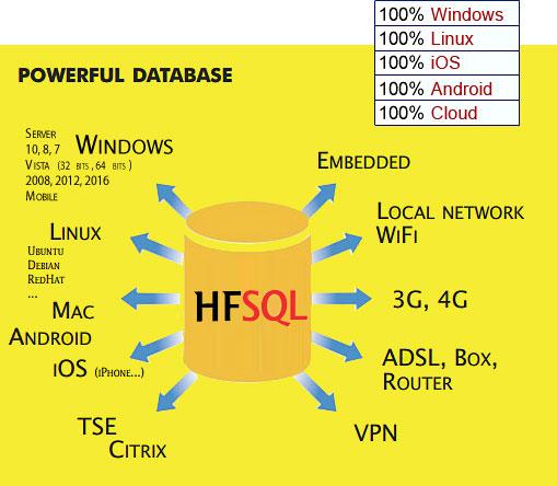 HFSQL Powerful database