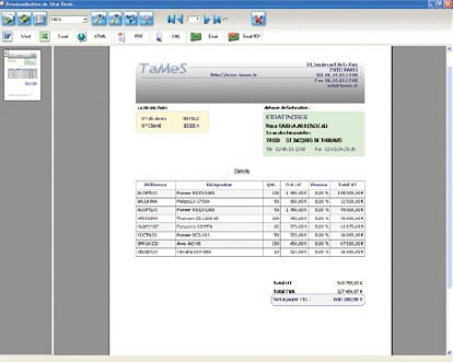 Example of print preview performed by Reports and Queries